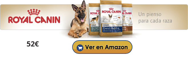 royal-canin-en-amazon
