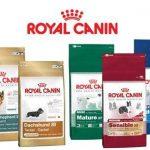 ¿Cuanto cuesta Royal Canin?